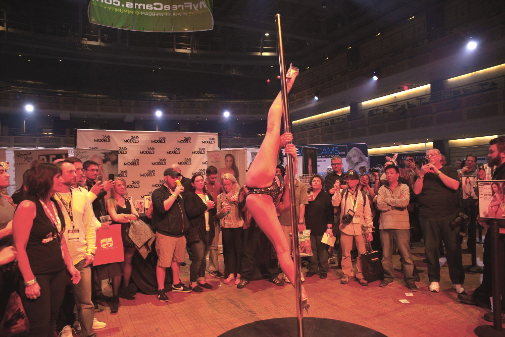 AVN 2017 Pole Dancing Demonstration