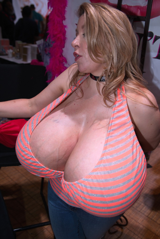 AVN 2017 Big Tits Display